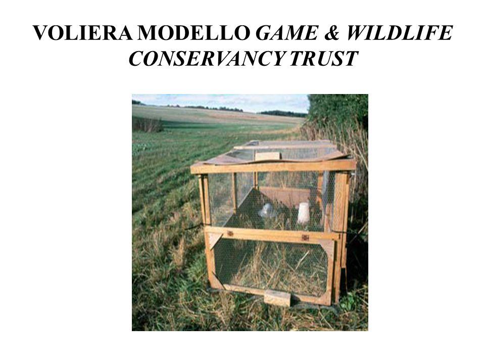 VOLIERA MODELLO GAME & WILDLIFE CONSERVANCY TRUST