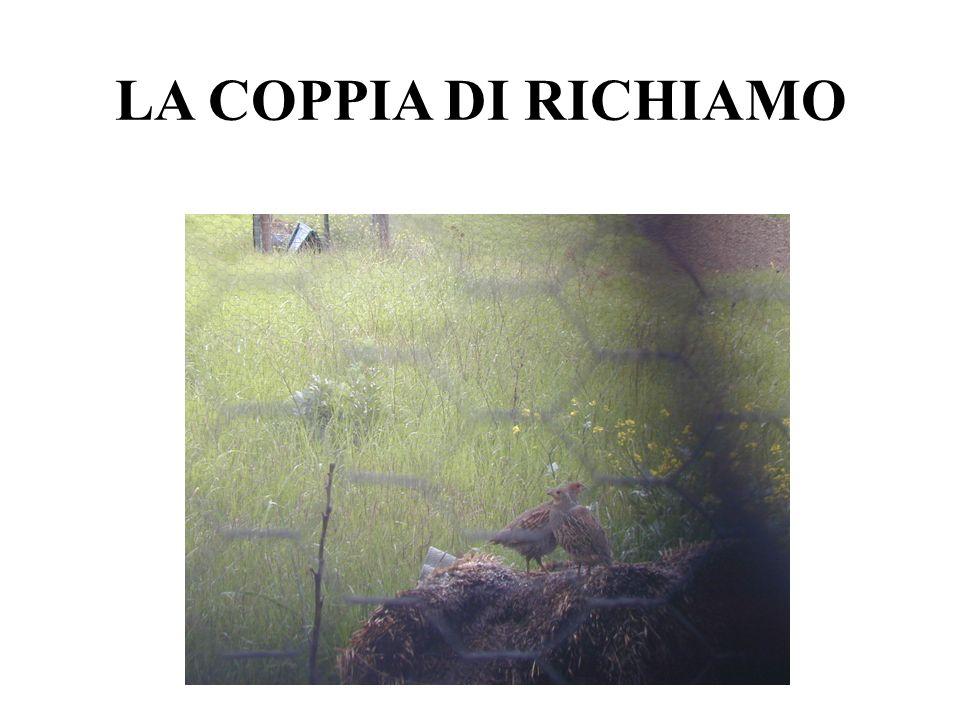LA COPPIA DI RICHIAMO