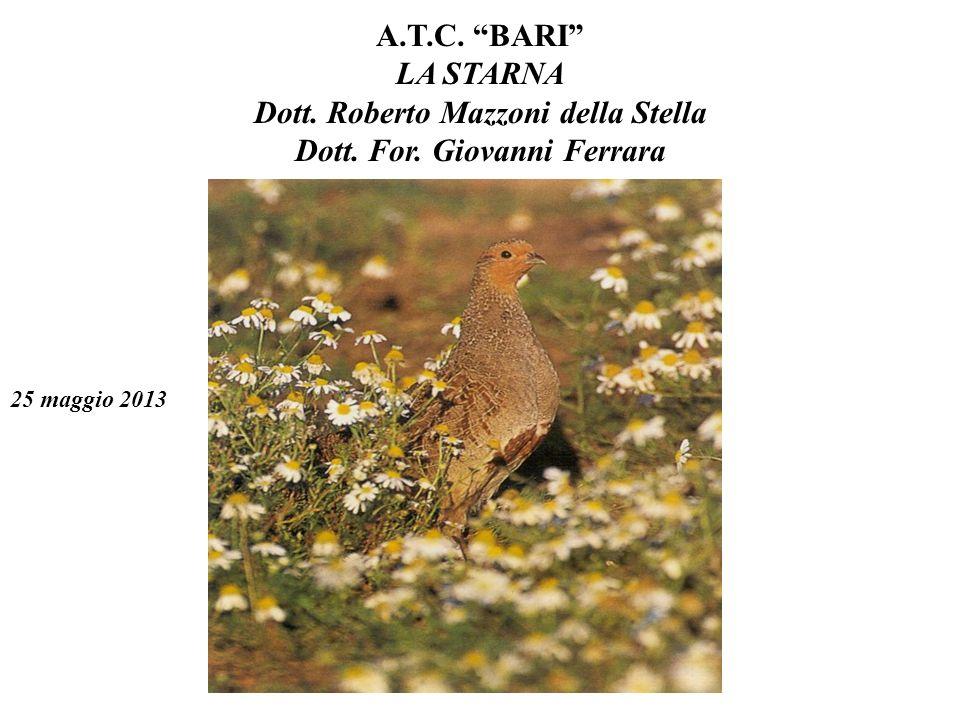 A. T. C. BARI LA STARNA Dott. Roberto Mazzoni della Stella Dott. For