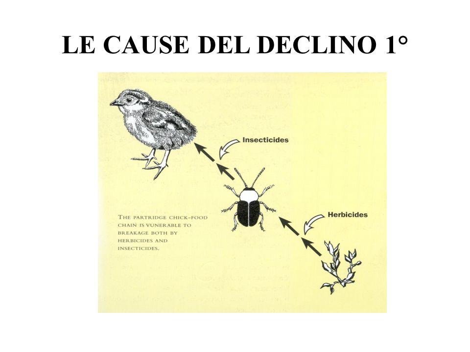 LE CAUSE DEL DECLINO 1°
