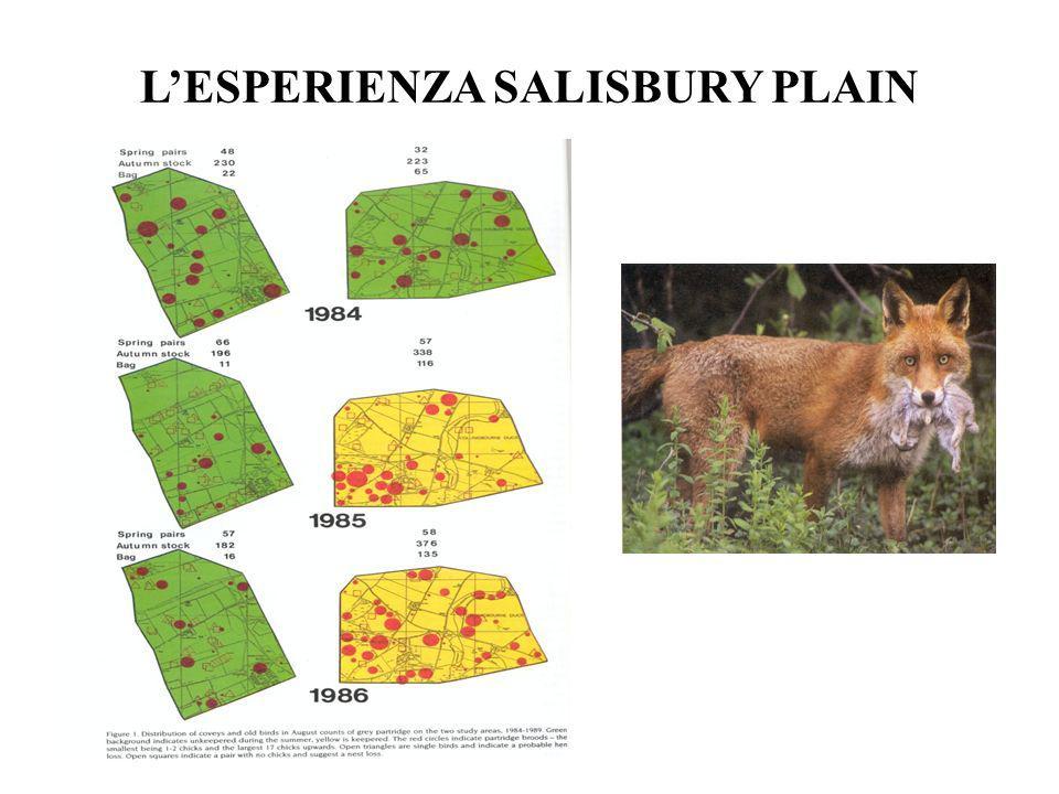 L'ESPERIENZA SALISBURY PLAIN