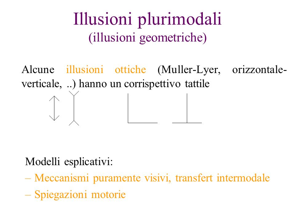 Illusioni plurimodali (illusioni geometriche)
