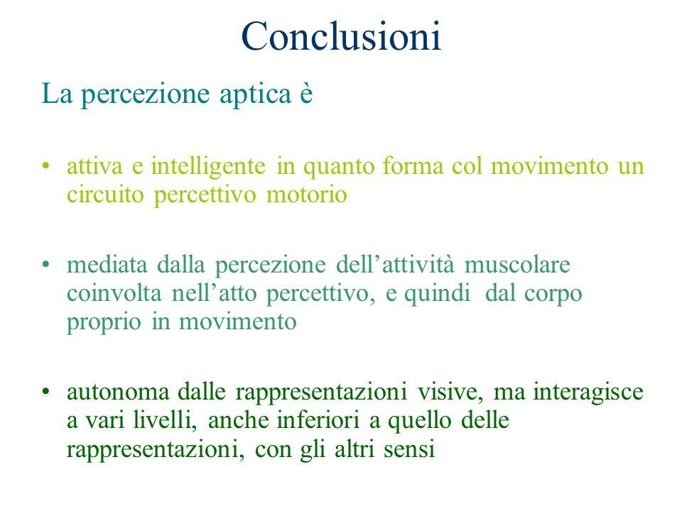 Conclusioni La percezione aptica è