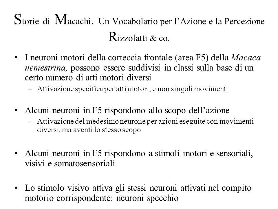 Storie di Macachi. Un Vocabolario per l'Azione e la Percezione Rizzolatti & co.
