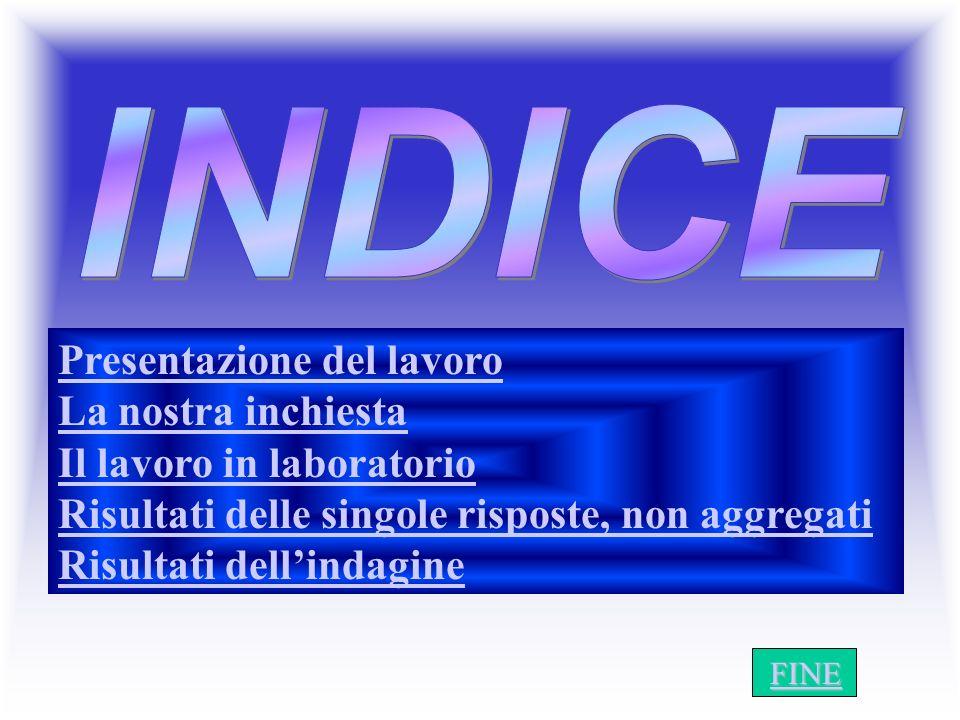 I N D I C E INDICE Presentazione del lavoro La nostra inchiesta