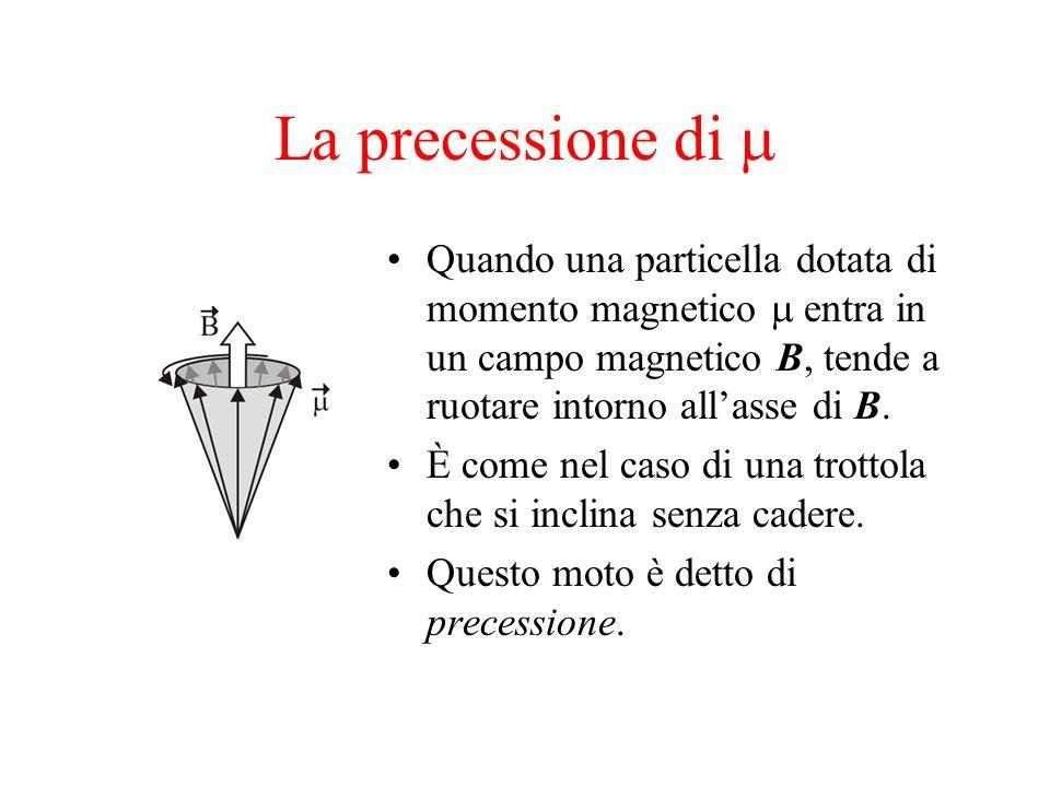 La precessione di m Quando una particella dotata di momento magnetico m entra in un campo magnetico B, tende a ruotare intorno all'asse di B.