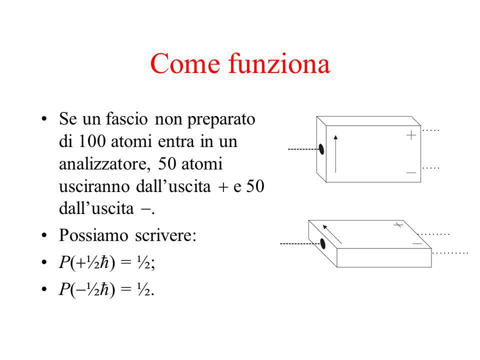 Come funziona Se un fascio non preparato di 100 atomi entra in un analizzatore, 50 atomi usciranno dall'uscita + e 50 dall'uscita -.