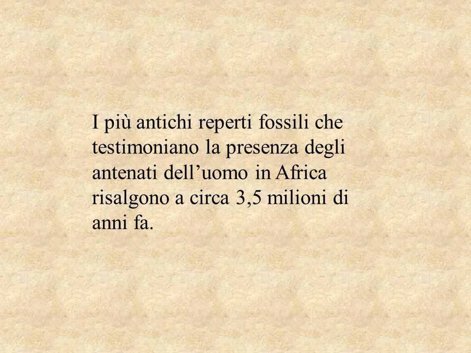 I più antichi reperti fossili che testimoniano la presenza degli antenati dell'uomo in Africa risalgono a circa 3,5 milioni di anni fa.