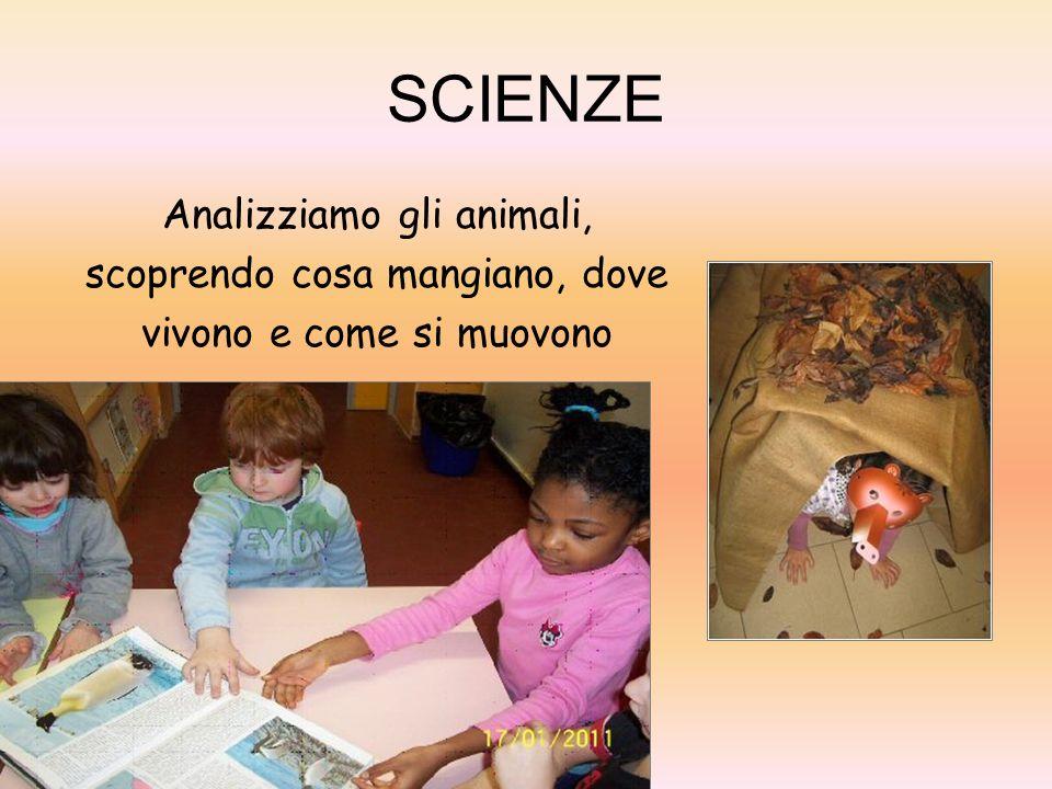 SCIENZE Analizziamo gli animali, scoprendo cosa mangiano, dove