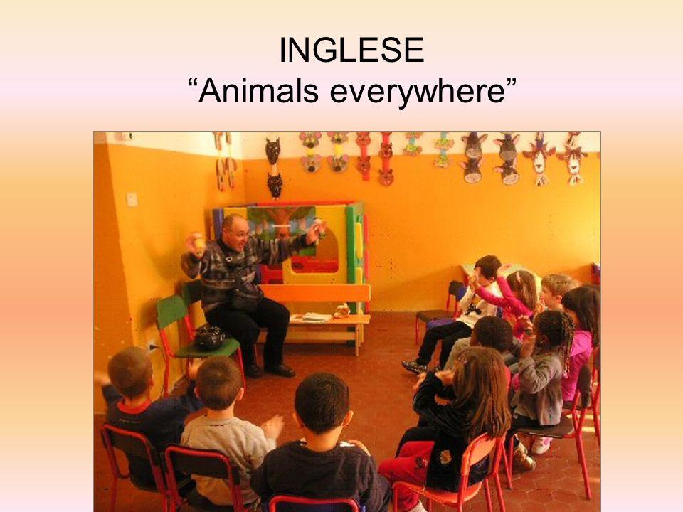 INGLESE Animals everywhere