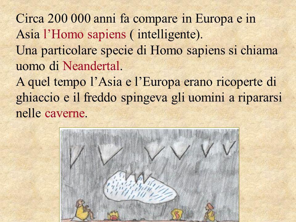 Circa 200 000 anni fa compare in Europa e in Asia l'Homo sapiens ( intelligente).