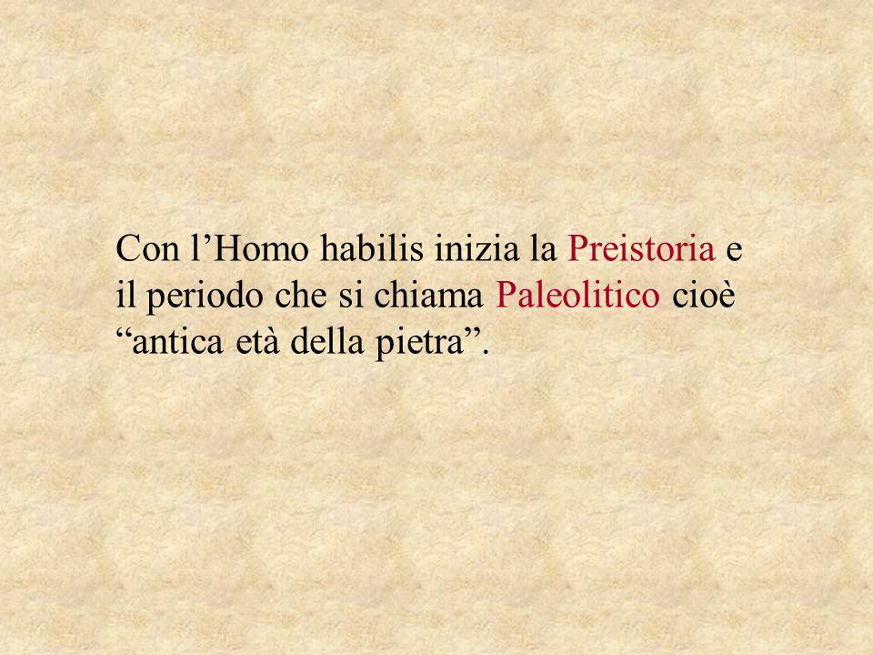 Con l'Homo habilis inizia la Preistoria e il periodo che si chiama Paleolitico cioè antica età della pietra .