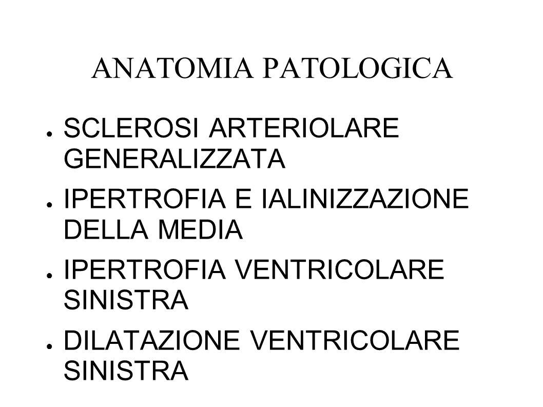 ANATOMIA PATOLOGICA SCLEROSI ARTERIOLARE GENERALIZZATA