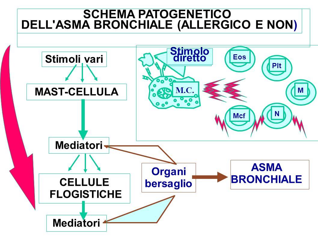 SCHEMA PATOGENETICO DELL ASMA BRONCHIALE (ALLERGICO E NON)