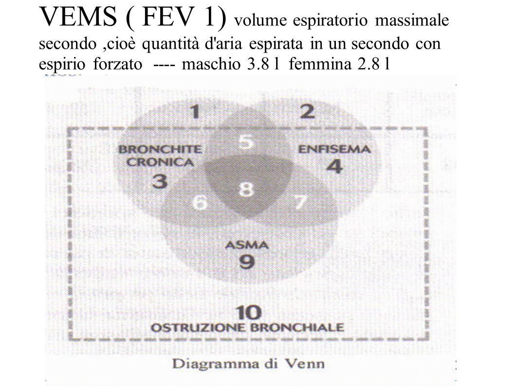 VEMS ( FEV 1) volume espiratorio massimale secondo ,cioè quantità d aria espirata in un secondo con espirio forzato ---- maschio 3.8 l femmina 2.8 l