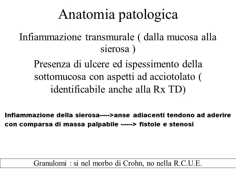 Infiammazione transmurale ( dalla mucosa alla sierosa )