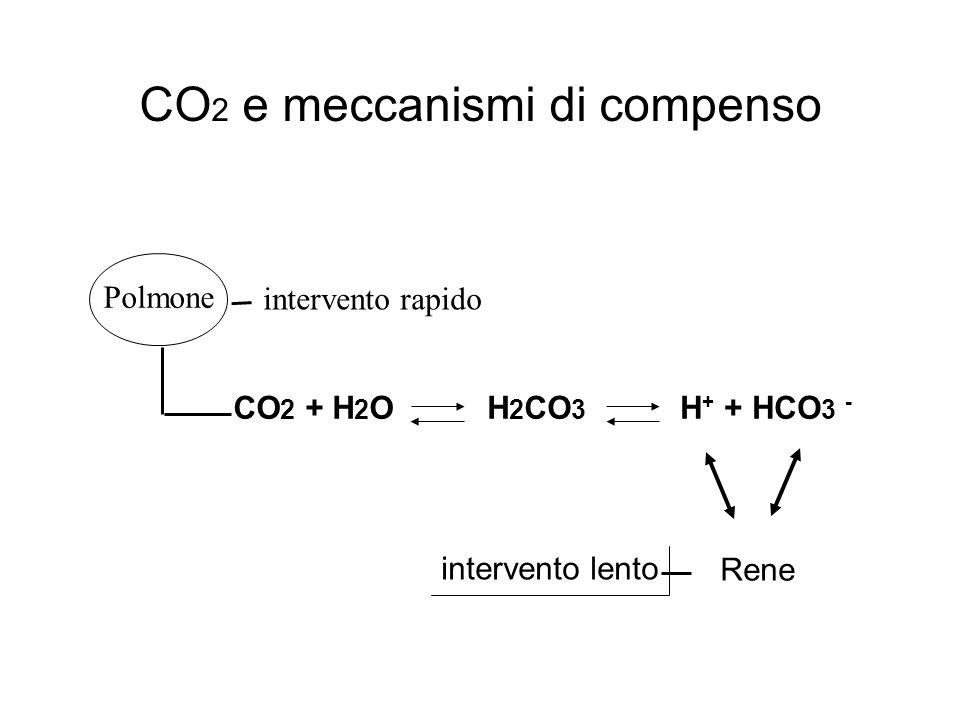 CO2 e meccanismi di compenso