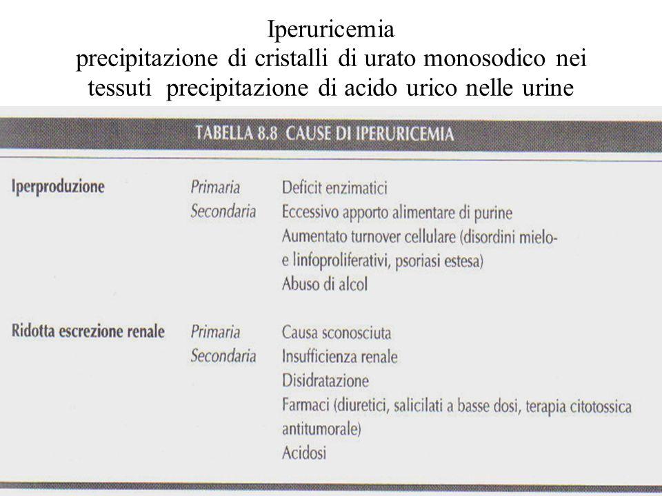 Iperuricemia precipitazione di cristalli di urato monosodico nei tessuti precipitazione di acido urico nelle urine
