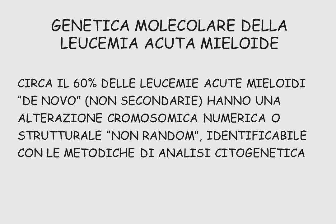 GENETICA MOLECOLARE DELLA LEUCEMIA ACUTA MIELOIDE