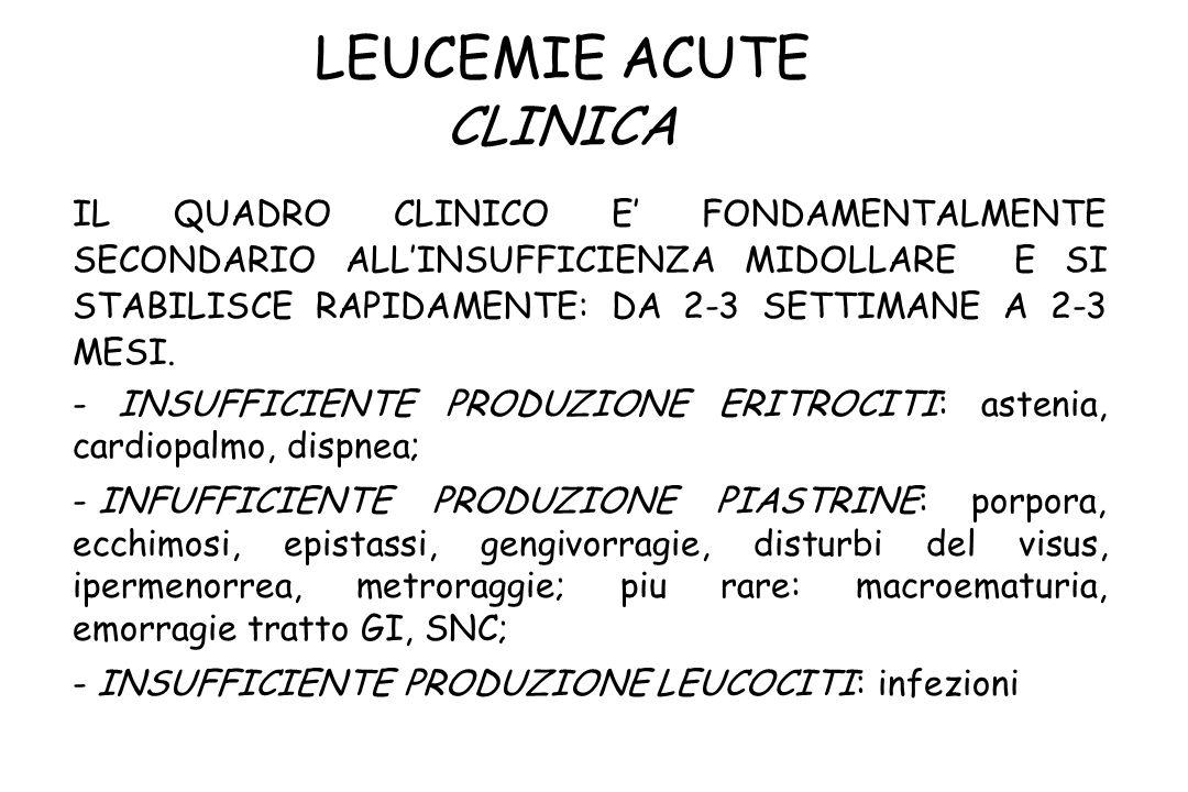 LEUCEMIE ACUTE CLINICA