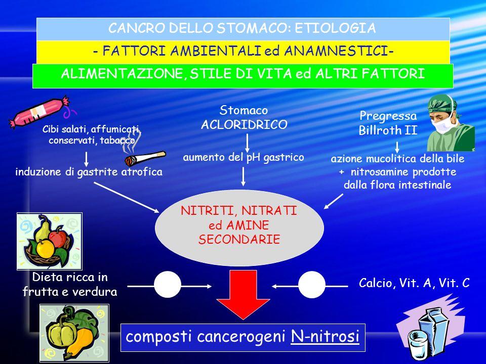 composti cancerogeni N-nitrosi