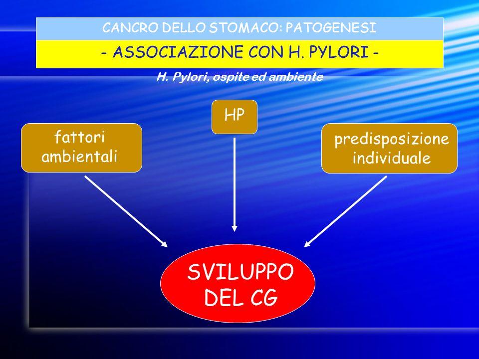 SVILUPPO DEL CG - ASSOCIAZIONE CON H. PYLORI - HP fattori