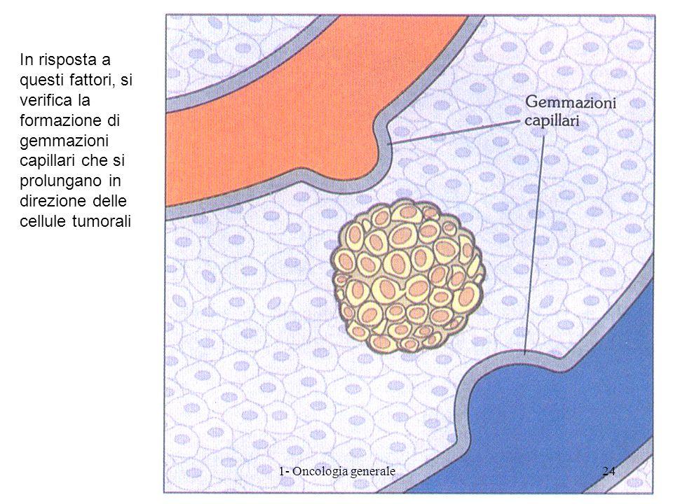 In risposta a questi fattori, si verifica la formazione di gemmazioni capillari che si prolungano in direzione delle cellule tumorali