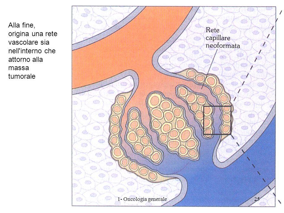Alla fine, origina una rete vascolare sia nell interno che attorno alla massa tumorale
