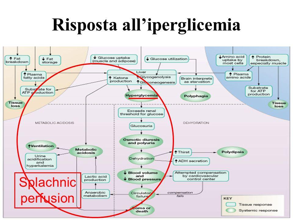 Risposta all'iperglicemia