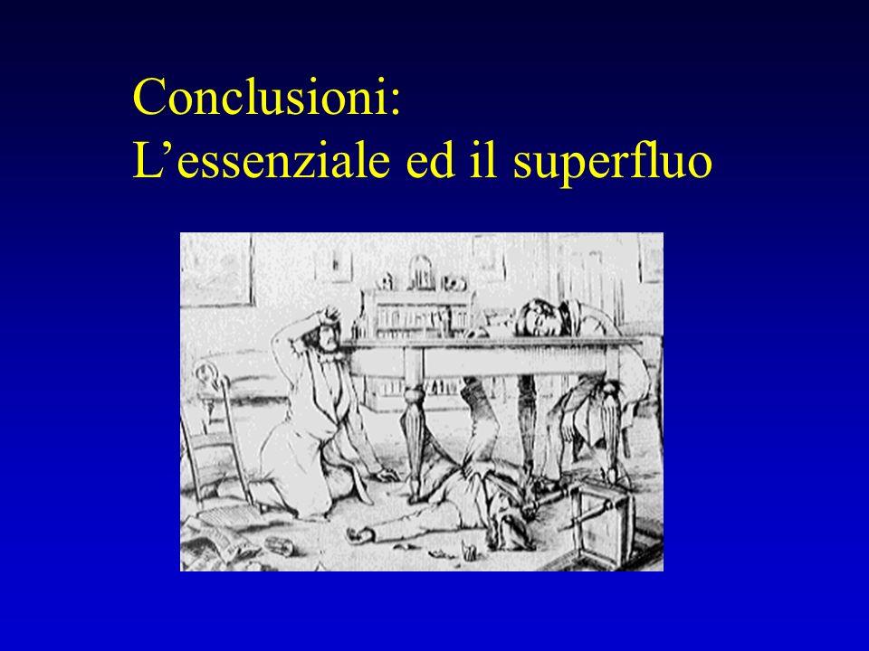Conclusioni: L'essenziale ed il superfluo