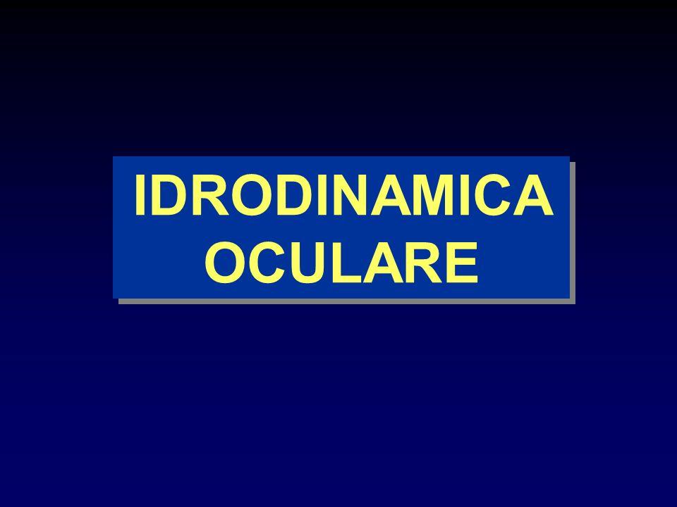 IDRODINAMICA OCULARE