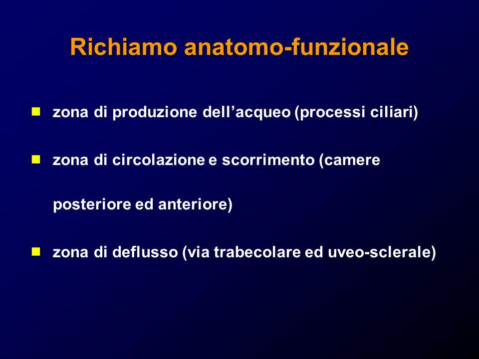 Richiamo anatomo-funzionale