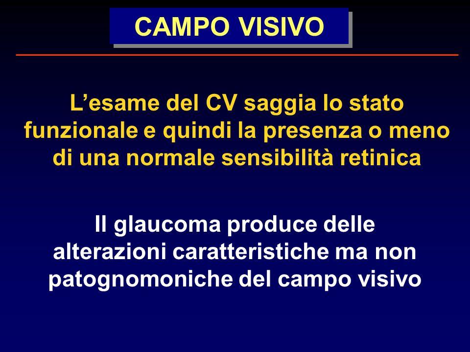 CAMPO VISIVO L'esame del CV saggia lo stato funzionale e quindi la presenza o meno di una normale sensibilità retinica.