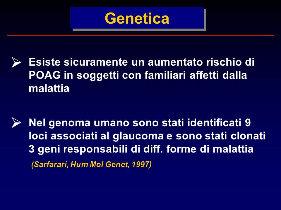 Genetica  Esiste sicuramente un aumentato rischio di POAG in soggetti con familiari affetti dalla malattia.