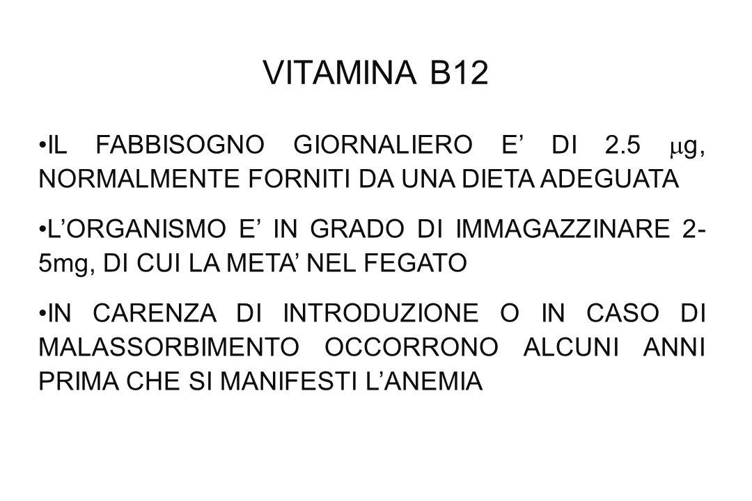 VITAMINA B12 IL FABBISOGNO GIORNALIERO E' DI 2.5 g, NORMALMENTE FORNITI DA UNA DIETA ADEGUATA.