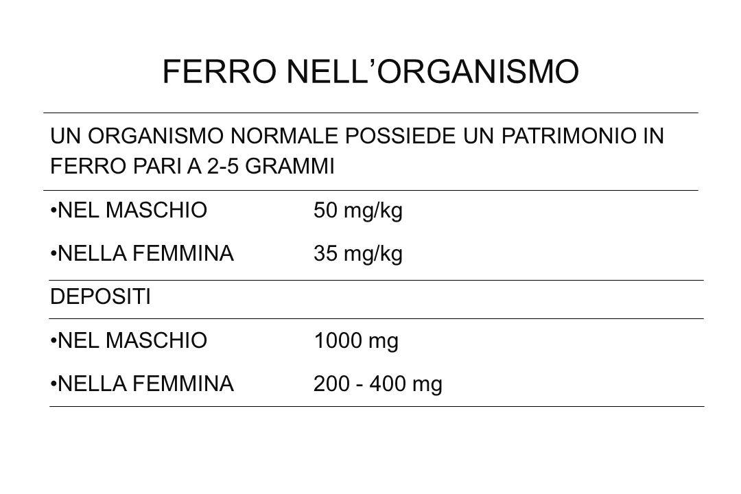 FERRO NELL'ORGANISMOUN ORGANISMO NORMALE POSSIEDE UN PATRIMONIO IN FERRO PARI A 2-5 GRAMMI. NEL MASCHIO 50 mg/kg.