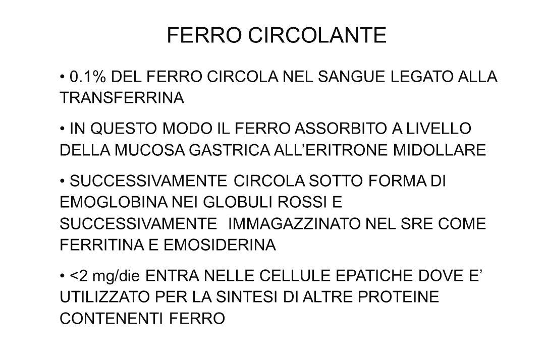 FERRO CIRCOLANTE0.1% DEL FERRO CIRCOLA NEL SANGUE LEGATO ALLA TRANSFERRINA.