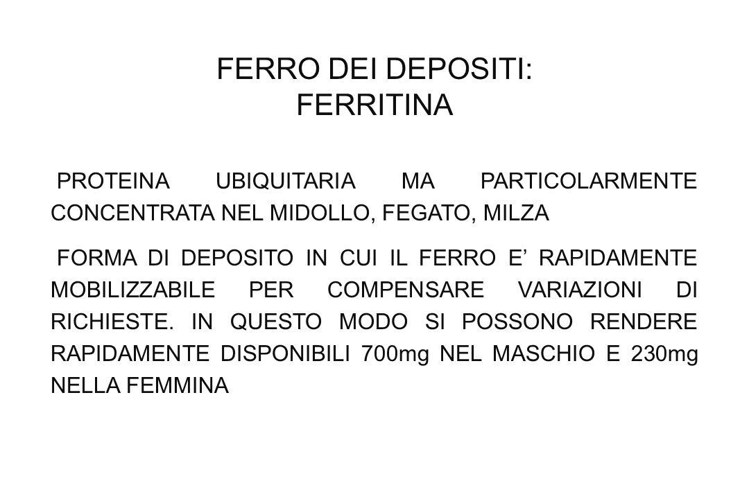 FERRO DEI DEPOSITI: FERRITINA