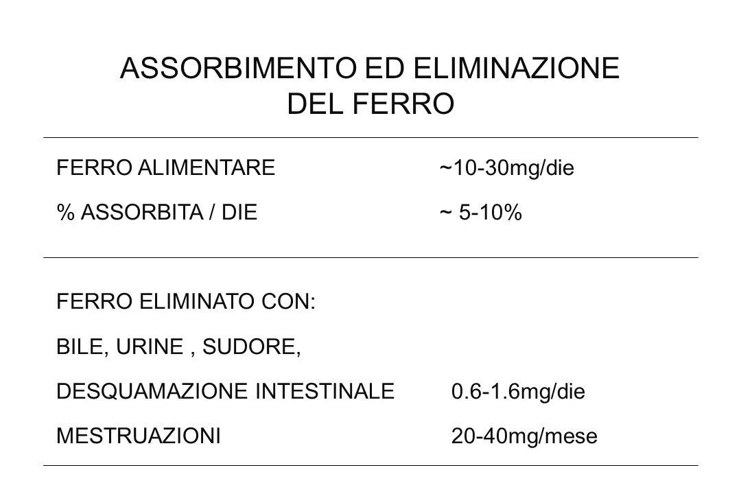 ASSORBIMENTO ED ELIMINAZIONE DEL FERRO