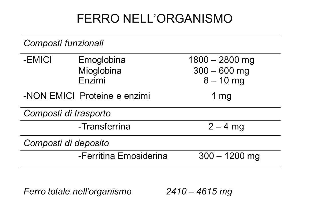 FERRO NELL'ORGANISMO Composti funzionali