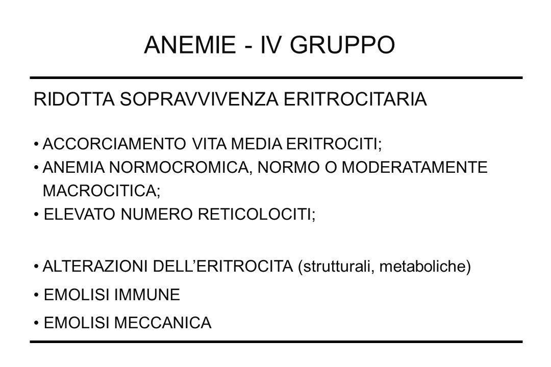 ANEMIE - IV GRUPPO RIDOTTA SOPRAVVIVENZA ERITROCITARIA