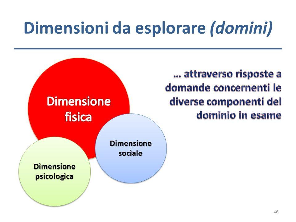 Dimensioni da esplorare (domini)