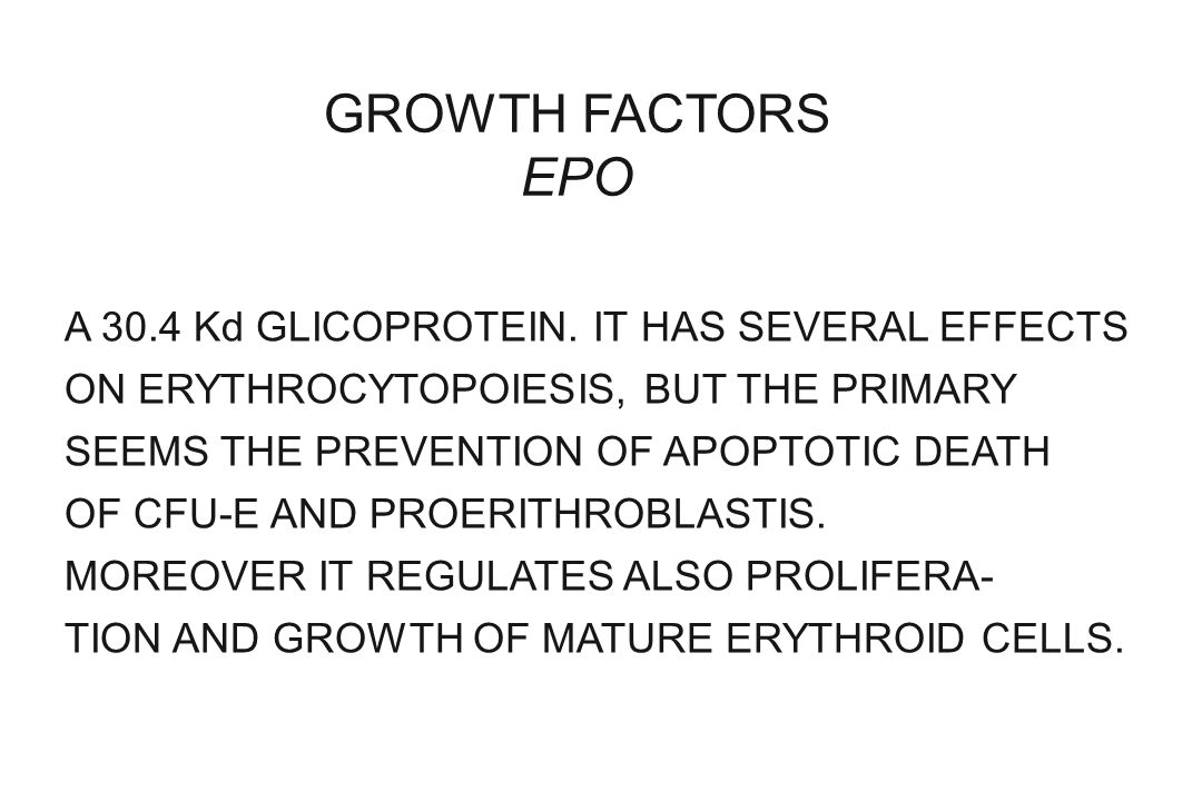 GROWTH FACTORS EPO A 30.4 Kd GLICOPROTEIN. IT HAS SEVERAL EFFECTS