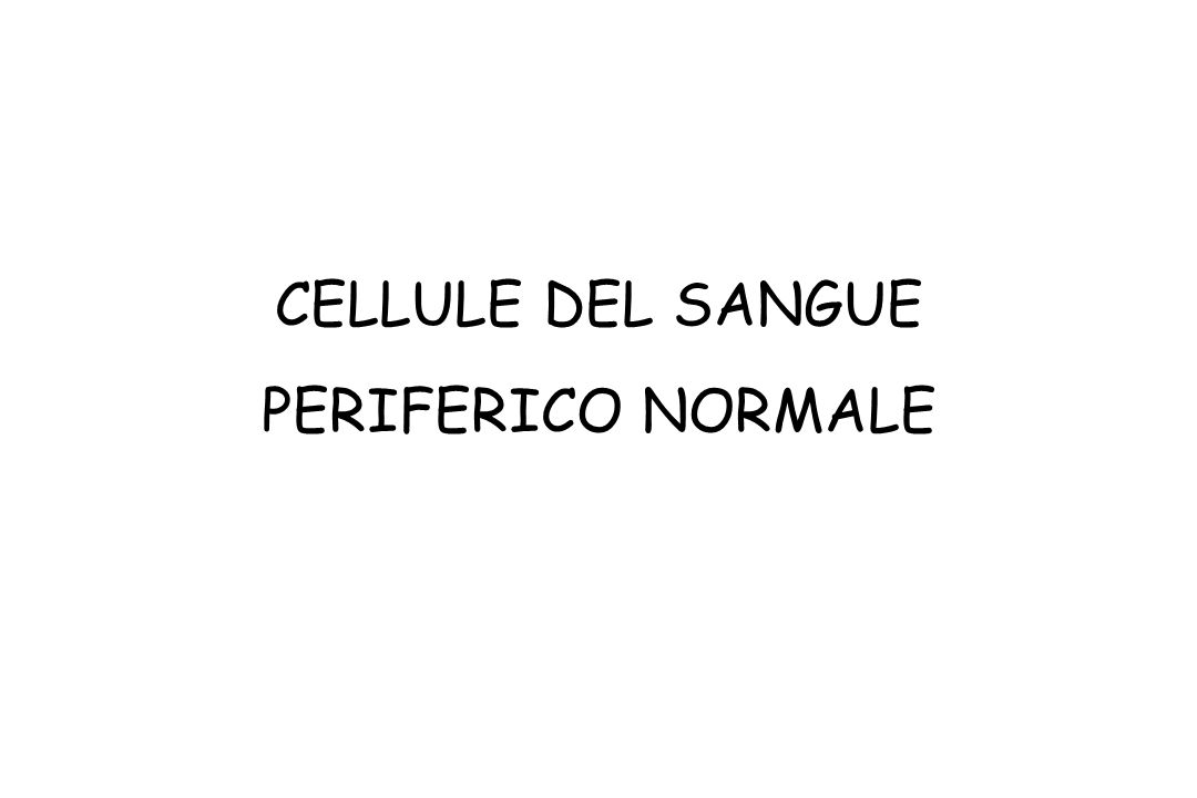 CELLULE DEL SANGUE PERIFERICO NORMALE