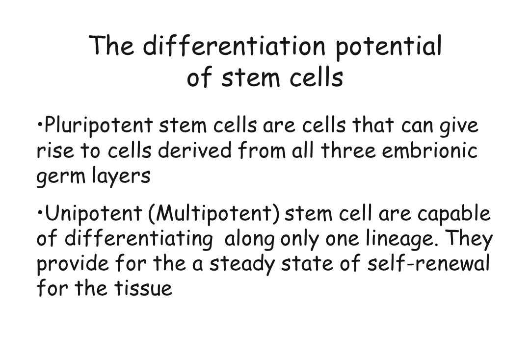 The differentiation potential of stem cells