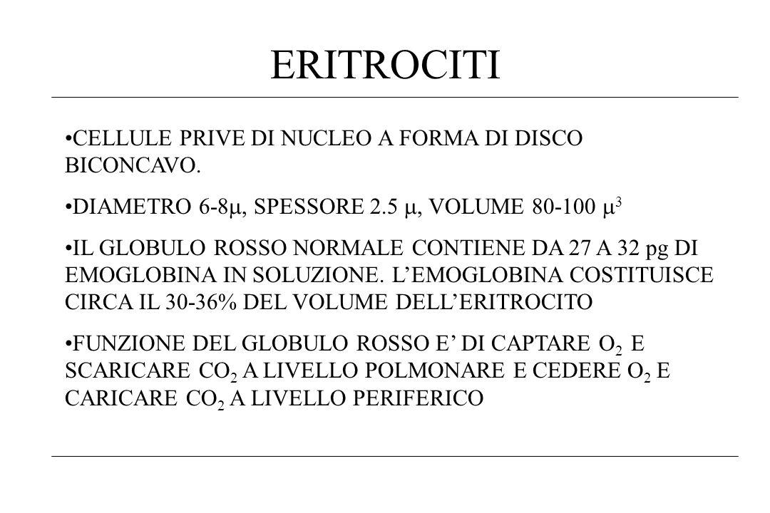ERITROCITI CELLULE PRIVE DI NUCLEO A FORMA DI DISCO BICONCAVO.