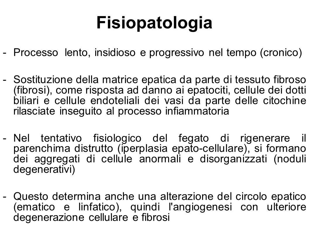 Fisiopatologia - Processo lento, insidioso e progressivo nel tempo (cronico)