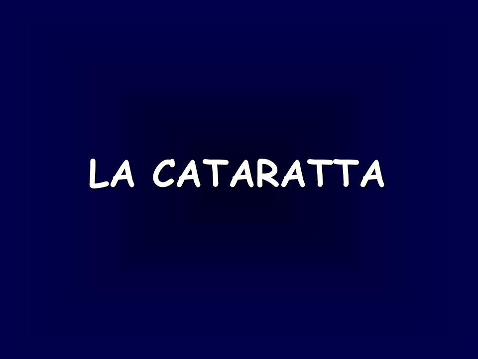 LA CATARATTA