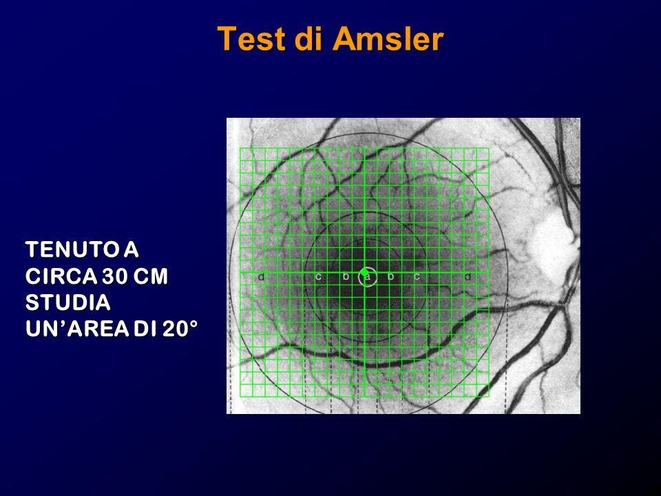 Test di Amsler TENUTO A CIRCA 30 CM STUDIA UN'AREA DI 20°