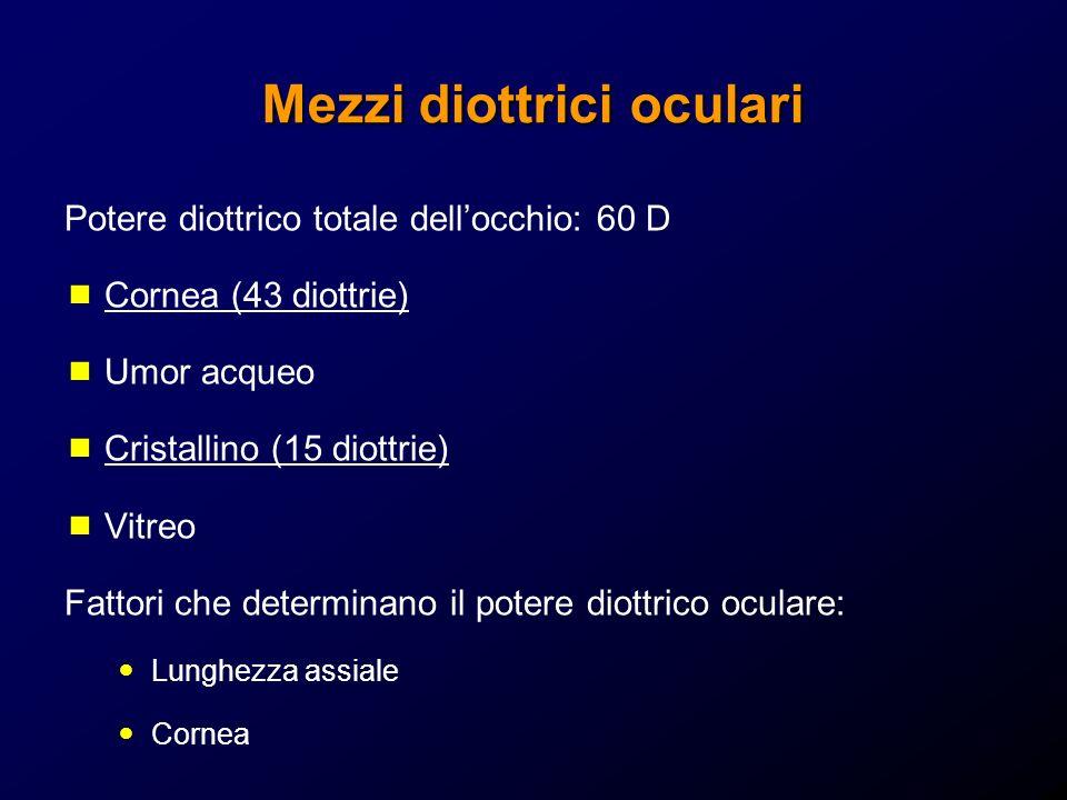Mezzi diottrici oculari